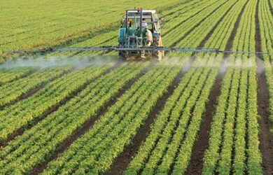 Expanding Your Investment Portfolio with Agriculture